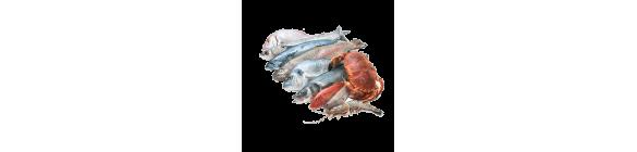 Fish/Sea Foods