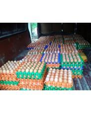 Eggs (Uprite farm products)