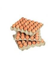 Crate of Eggs (Medium)