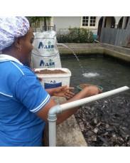 Fish Feed (ALLER AQUA)