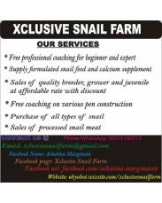 Xclusive farm