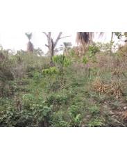 Cheap farm lands in acres