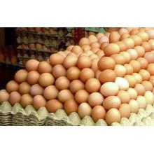 Jumbo Crate Of Eggs