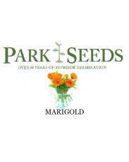Marigold flower seeds