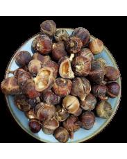 Gorontula Fruits