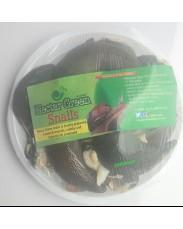 NectarGreen snails